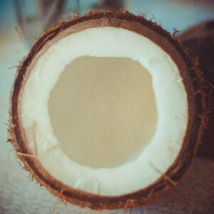 Different layers inside the coconut. Picture by Katherine Volkovski on Unsplash